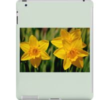 Two & a half daffs iPad Case/Skin