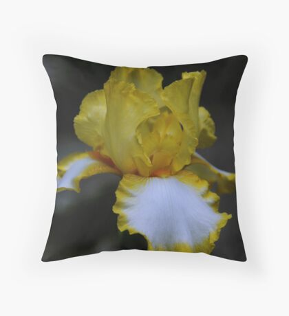 Cultivated Iris Throw Pillow