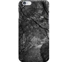 Scary Trees- Mount Lofty Botanic Gardens iPhone Case/Skin