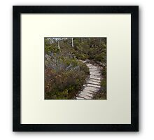 Duckboard Path Framed Print
