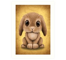 Cute Brown Baby Bunny Rabbit  Art Print