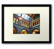 Inside the Natural History Museum Framed Print