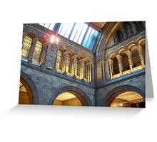 Inside the Natural History Museum Greeting Card