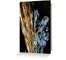 Grass and Silver Leaves Greeting Card