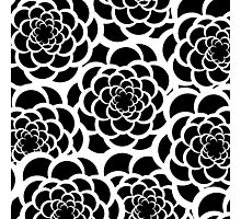 Abstract black and white modern floral pattern Photographic Print