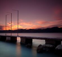Purple dreams by Lidija Lolic