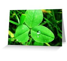 a drop of hope Greeting Card