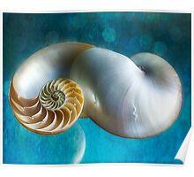 Aquatic Dreams II Poster