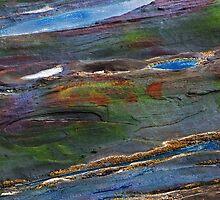 Pemaquid Palette by EvaMcDermott