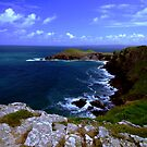 The Rumps, Cornwall by Mark Wilson