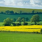 Below Warden Hill, Bedfordshire. by Geoff Spivey