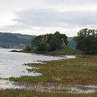 Castle Lachlan Approach by zahnartz