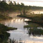 Early Morning Fog by zahnartz