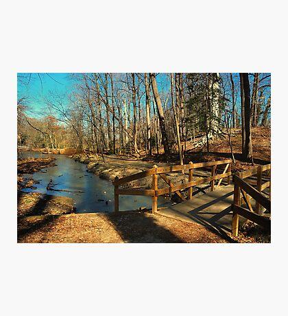 Hopkins Pond Haddonfield NJ Photographic Print
