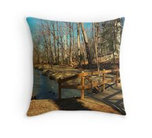 Hopkins Pond Haddonfield NJ Throw Pillow