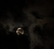 Moonlit Clouds by down23