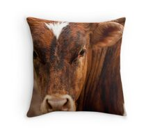 Brindle Beef Throw Pillow