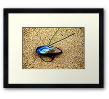Mussel Shell and Seagrass Framed Print