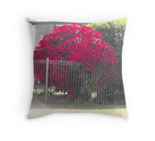 It has got to be Red. Throw Pillow