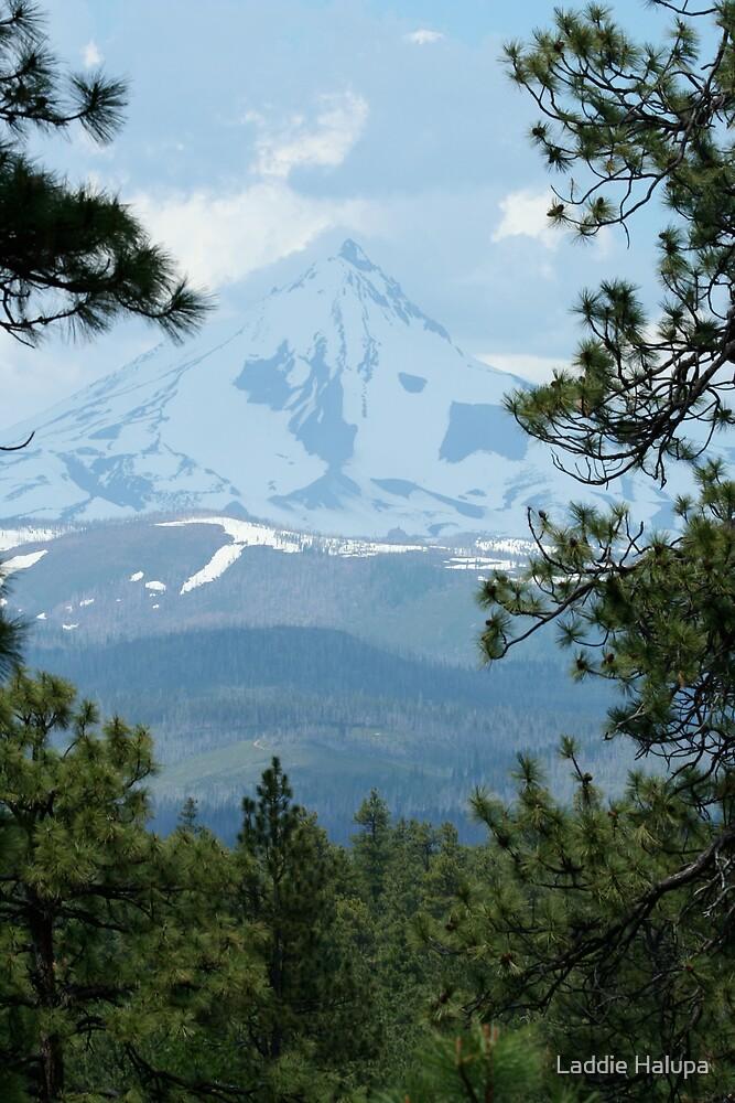 Mt. Jefferson by Laddie Halupa