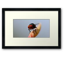Dude, Did You Have To Use The Flash? Framed Print