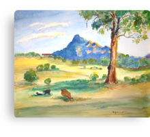 Mt Barney View with Cows Canvas Print