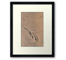 Seagrass and Ripples 2 Framed Print