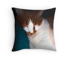 Nap Time Molly Throw Pillow