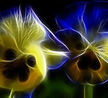 Blue and Yellow Pansy Flowers in Fractal by bloomingvine