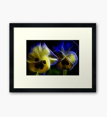 Blue and Yellow Pansy Flowers in Fractal Framed Print