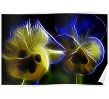 Blue and Yellow Pansy Flowers in Fractal Poster