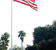 Memorial Island Flag by Larry  Grayam