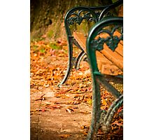 Autumn leaves surround the bench in a blanket of orange Photographic Print