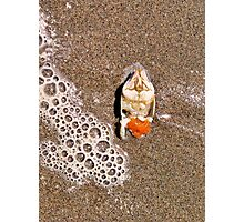 Crab and Foam Photographic Print