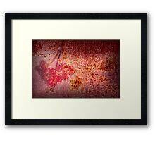 Old Wall Texture with Fruits Framed Print