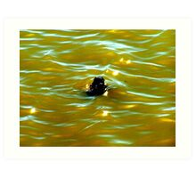Stick In The Water Art Print