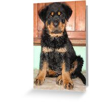 One Damp Dog  Greeting Card