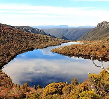 On top of the world_Cradle Mountain by Sharon Kavanagh