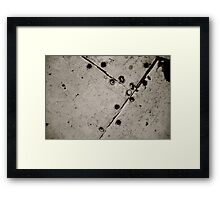 Bathroom Floor Framed Print