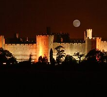 Caernarfon Castle at Night (please view enlarged) by AnnDixon
