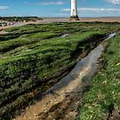Perch Rock Lighthouse by Adrian Evans