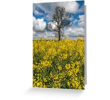 Sea of Yellow Greeting Card