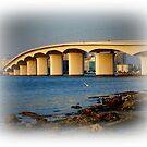 Sarasota Bridge  by Isa Rodriguez