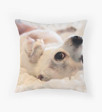Bedbug Throw Pillow