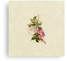 Chic Girly Pink White Vintage Rose Painting  Canvas Print