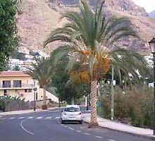 street in La Gomera -ESP by 333Eve