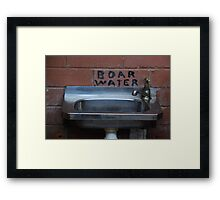 Boar's Water? Framed Print