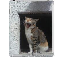 sleepy cat iPad Case/Skin