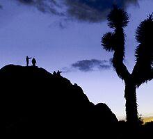 Joshua twilight by Paul Grinzi