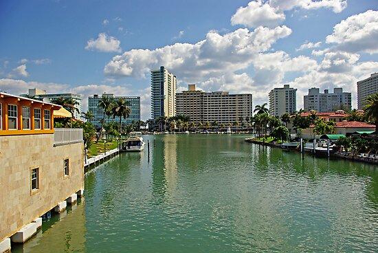 Miami Beach by Zal Lazkowicz